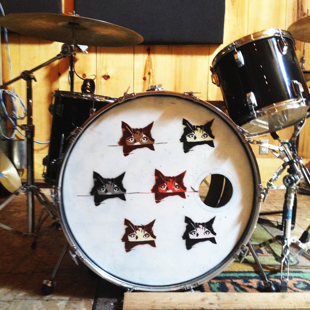Kitten Tama Swingstar